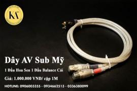 Tối ưu kết nối tín hiệu giữa đầu đọc và amply với Dây AV Sub Mỹ 1 Đầu Hoa Sen 1 Đầu Balance Cái